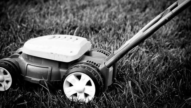best-lawn-mower